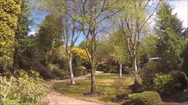 Krásná jehličnatá zahrada s kvetoucími stromy a keři na jaře