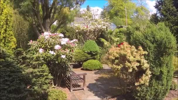 Gyönyörű tűlevelű kert virágzó fákkal és bokrokkal tavasszal