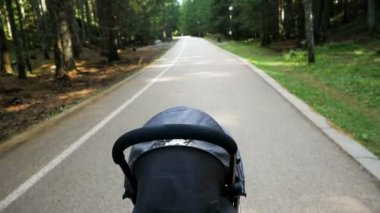 Stroller rides through the forest on an asphalt road in the spring in Montenegro