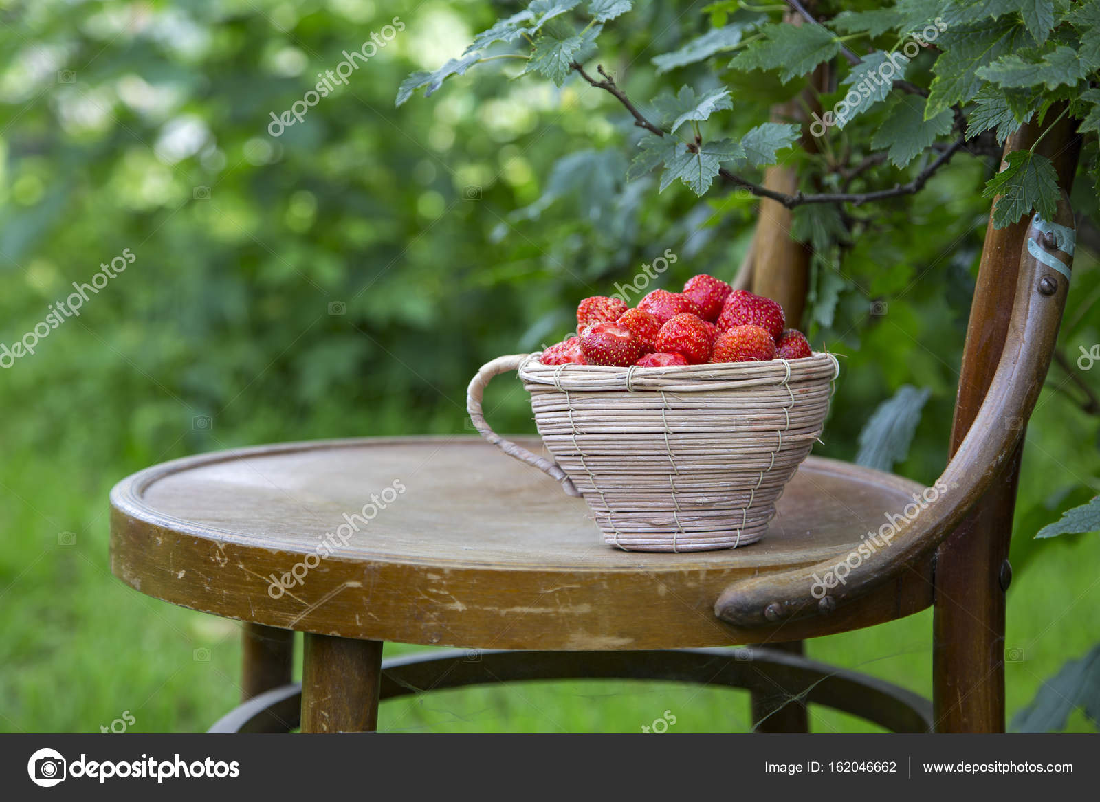 Frische Erdbeeren In Einem Korb Auf Einem Stuhl Stockfoto