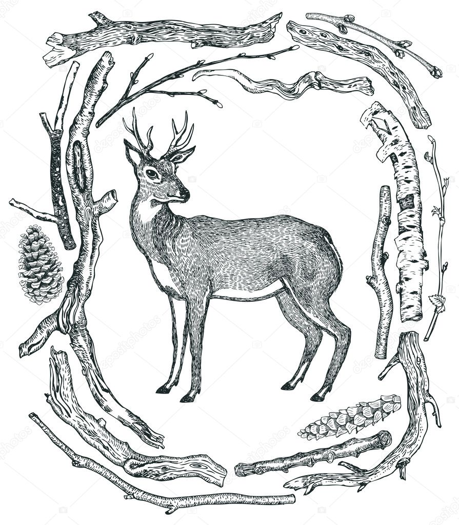 Beautiful Deer Frame of Driftwood Wild wild woods Sketch style H ...