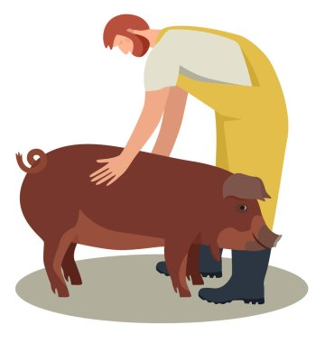 Farmer with Red Wattle hog  Breeds of domestic pigs Flat vector illustration Cattle breeding and stock raising set