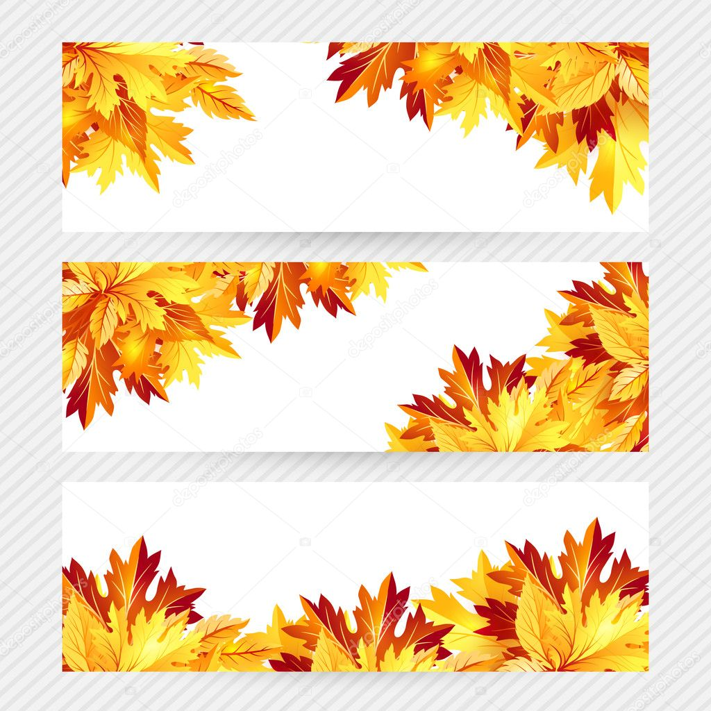 Autumn background with fall maple tree leaves archivo - Descargar autumn leaves ...