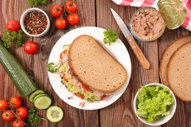 tasty sandwich with tuna