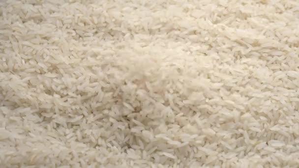 bílá rýže zblízka