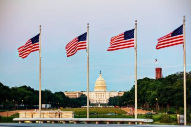 Flags in front of State Capitol building