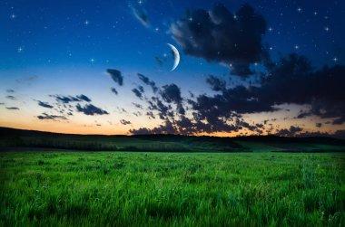 view on night sky