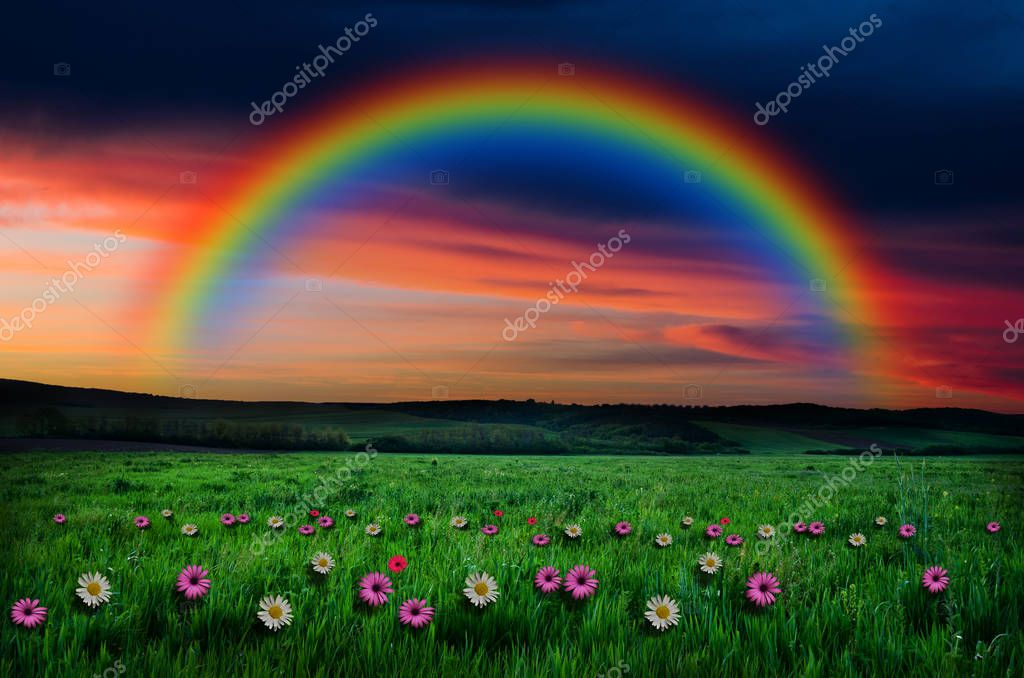 flowers field on rainbow background