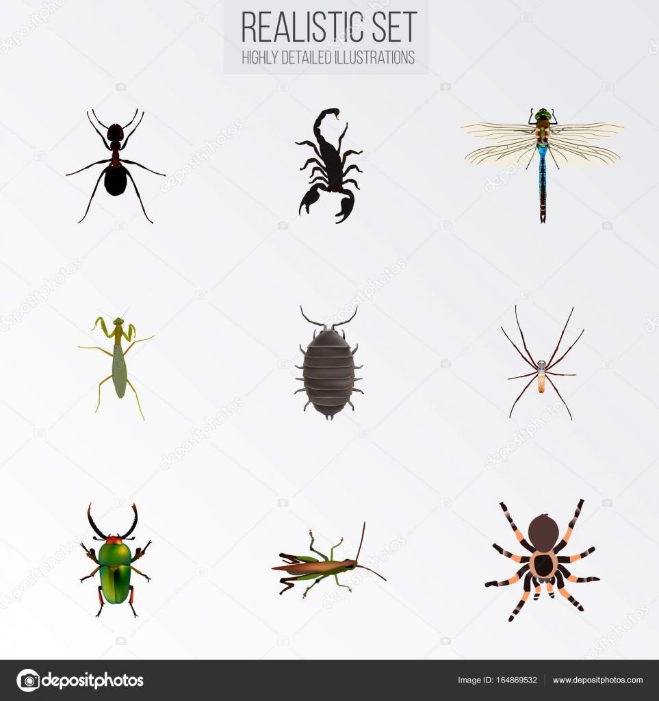 Zehir, arı, akrep - iyi veya kötü