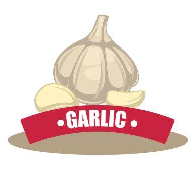 garlic spicy ingredient