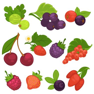 Berries flat icons