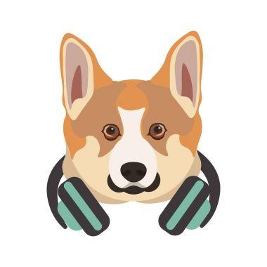 Basenji breed dog with headphones on neck
