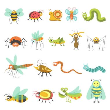 Funny cartoon insects and bugs