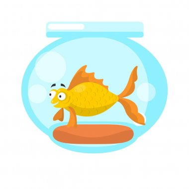 Golden fish in transparent aquarium
