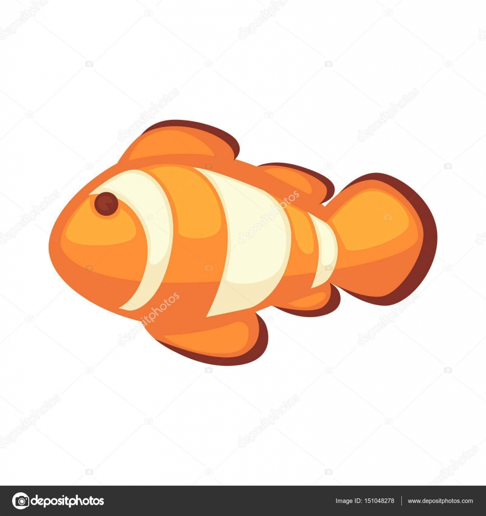 Pesce Pagliaccio O Anemonefish Illustrazione Vettoriale Isolato Su