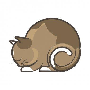 Brown cat sleeping