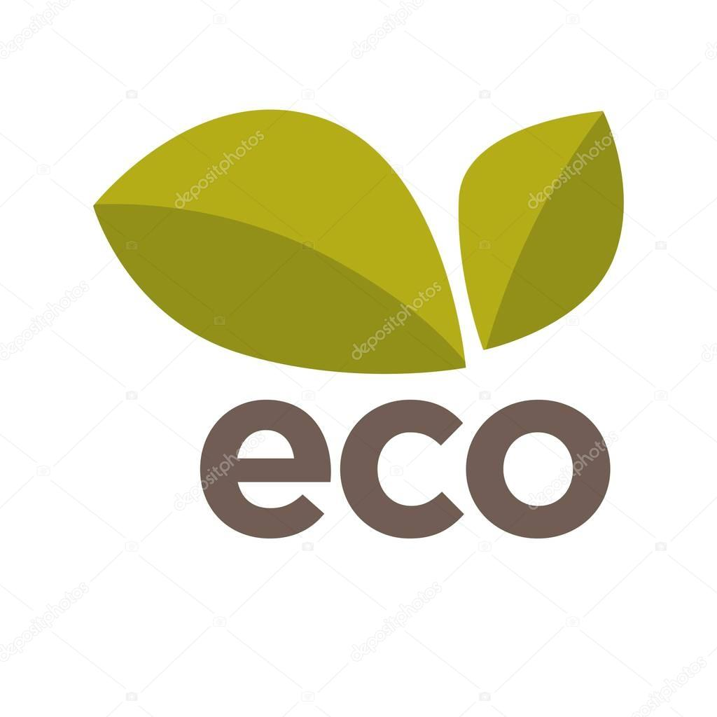 Eco logo design with green leaves vector isolated on white.