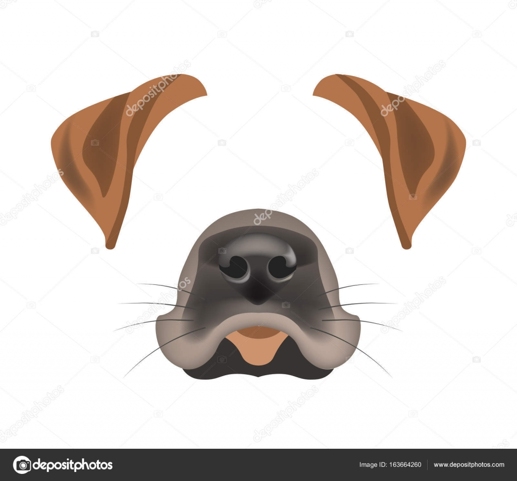 dog animal face filter template for video chat animated effect or smartphone camera application or cartoon selfie photo mask pet animals head ears and nose