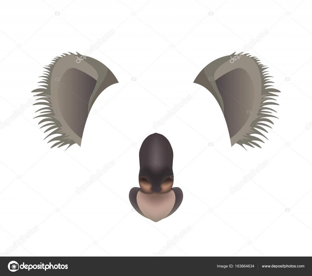 コアラ動物顔フィルター テンプレート ストックベクター sonulkaster