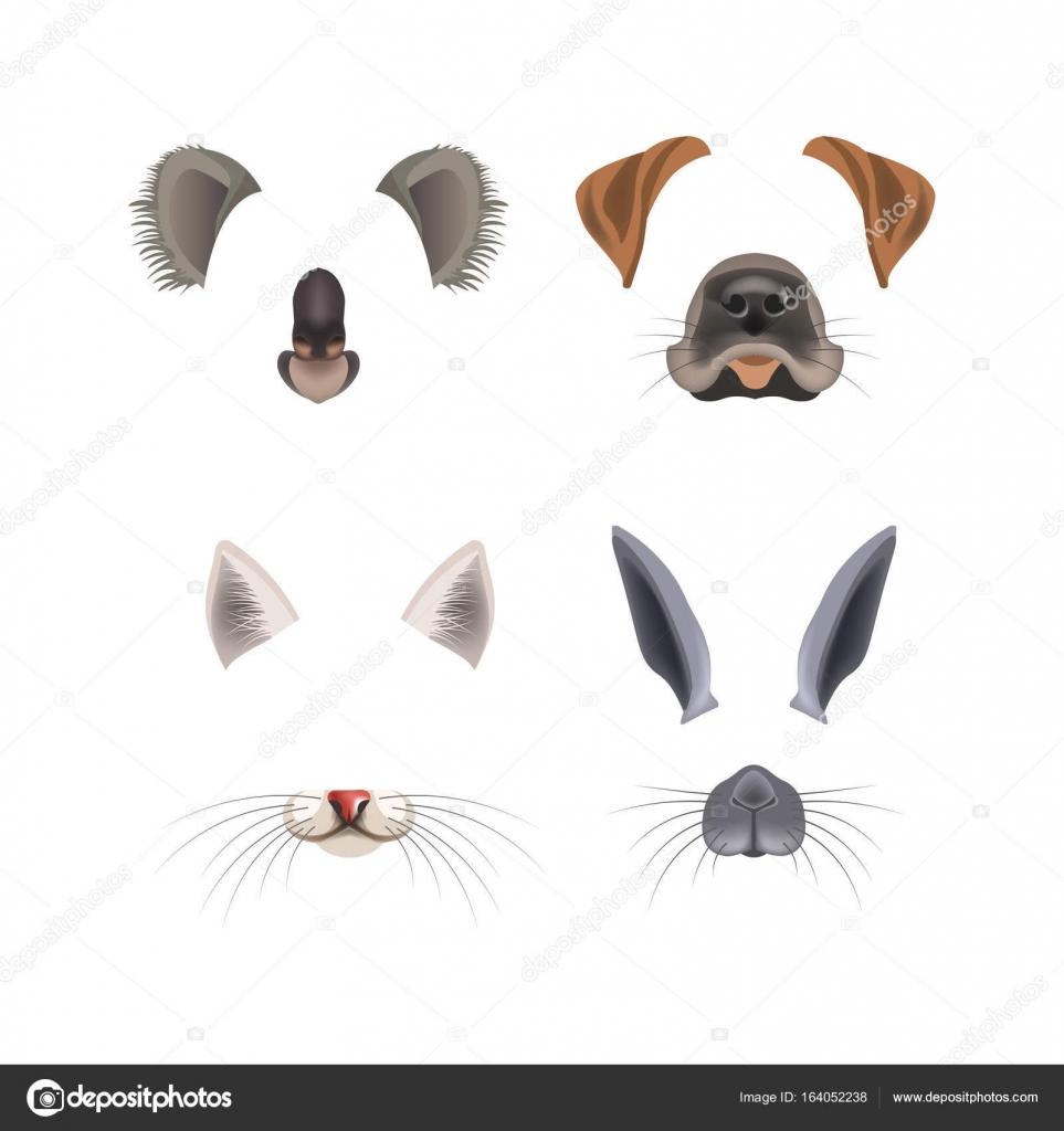 Hayvan Şablonları