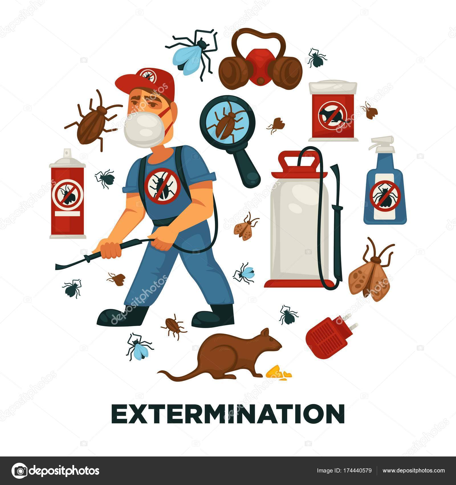 extermination pest control service company information poster template sanitary domestic stock vector