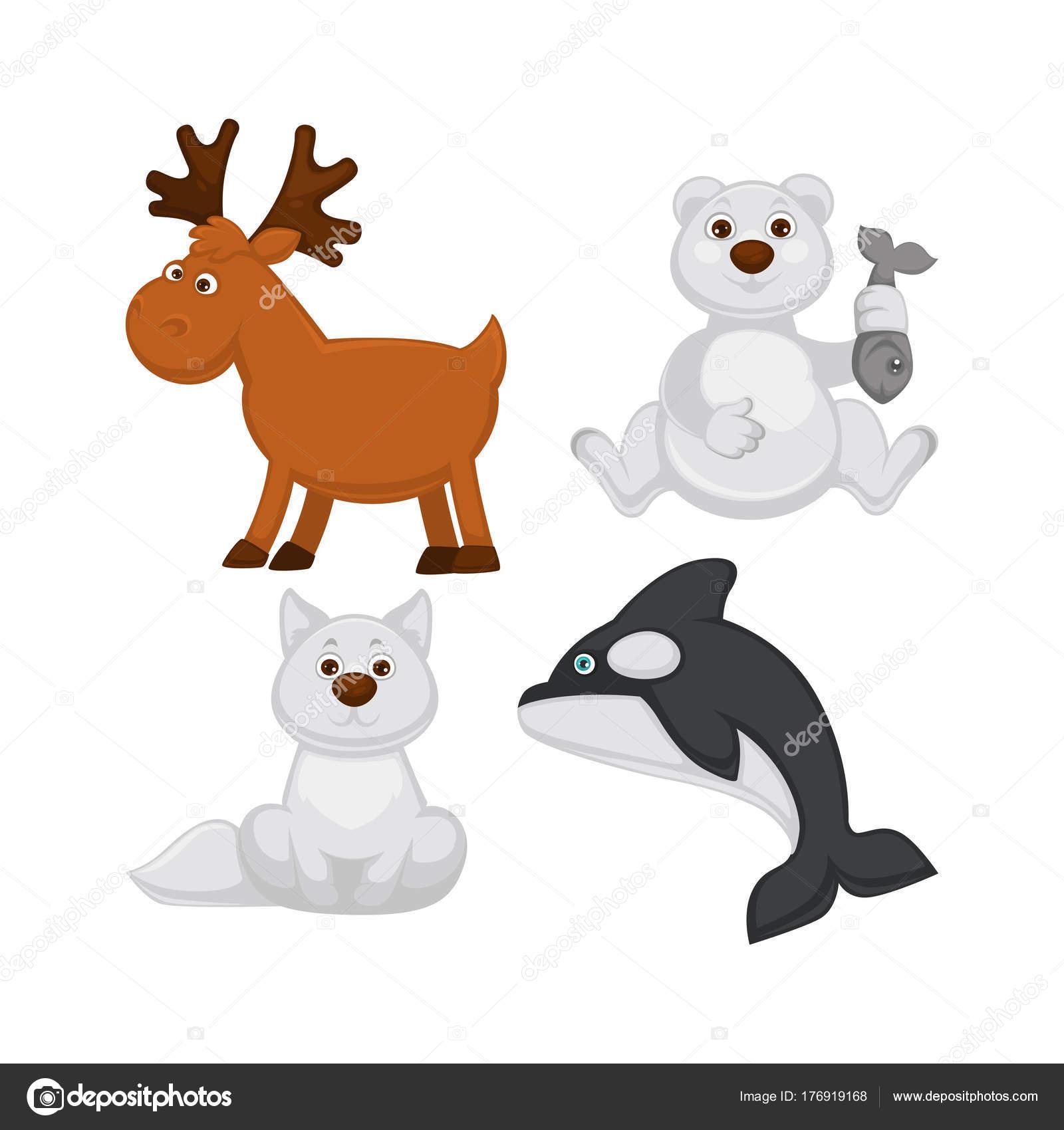 寒い国から動物のかわいい赤ちゃん 枝角を持つムース アルビノ狐ふわふわ