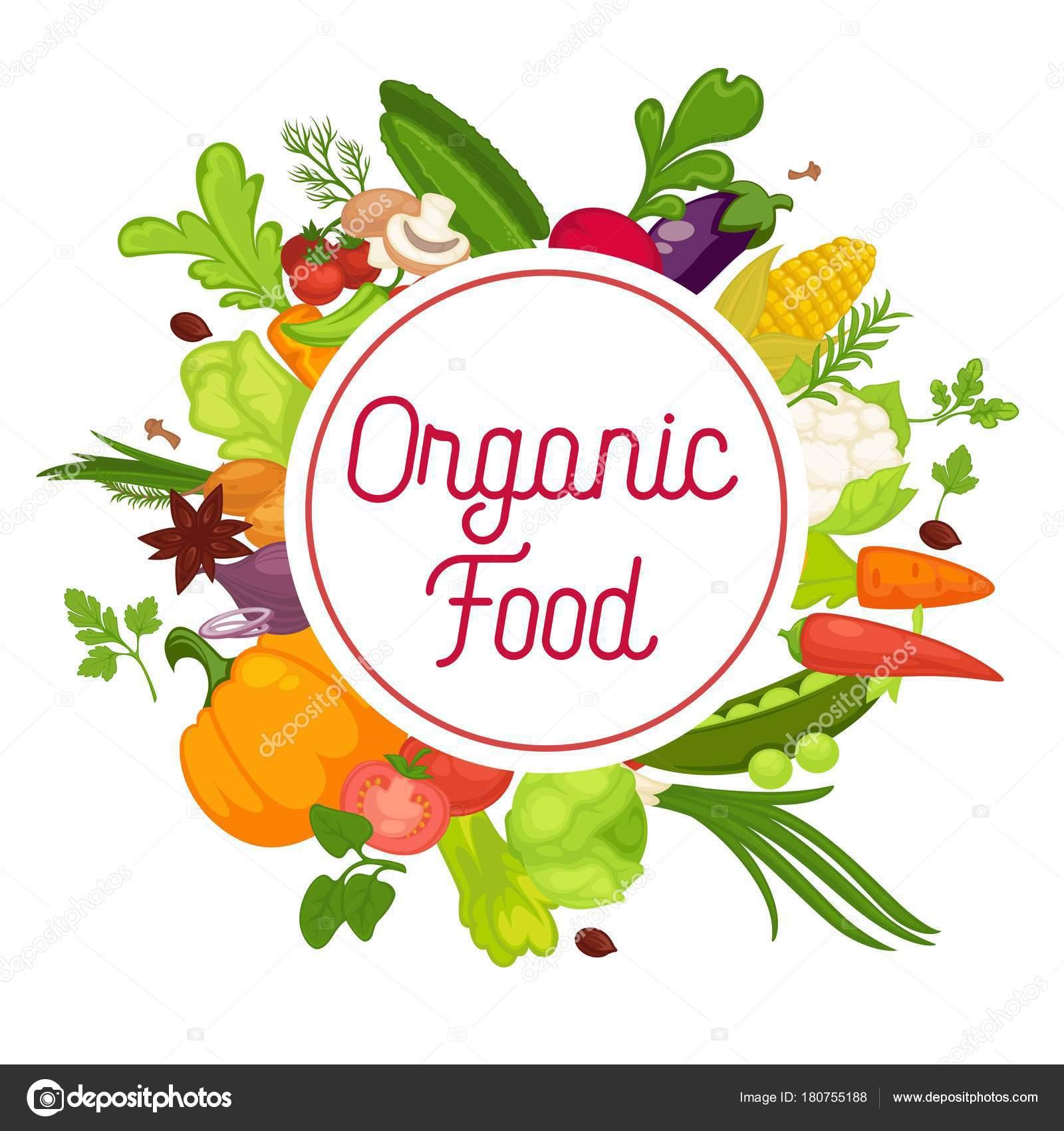 Organic Food Products Healthy: Cartaz Comida Saudável Vegetais Vegetais Orgânicos Repolho