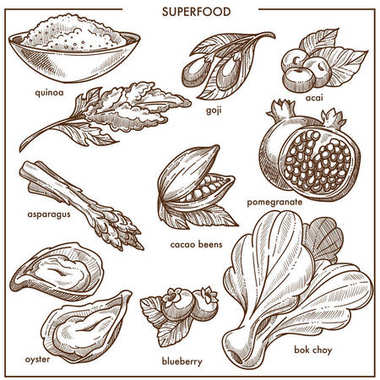 Superfood healthy diet food sketch icons. Vector goji and acai berry or quinoa seeds, bok choi vegetable lettuce salad, asparagus and oyster seafood or pomegranate fruit, blueberry and cacao beans