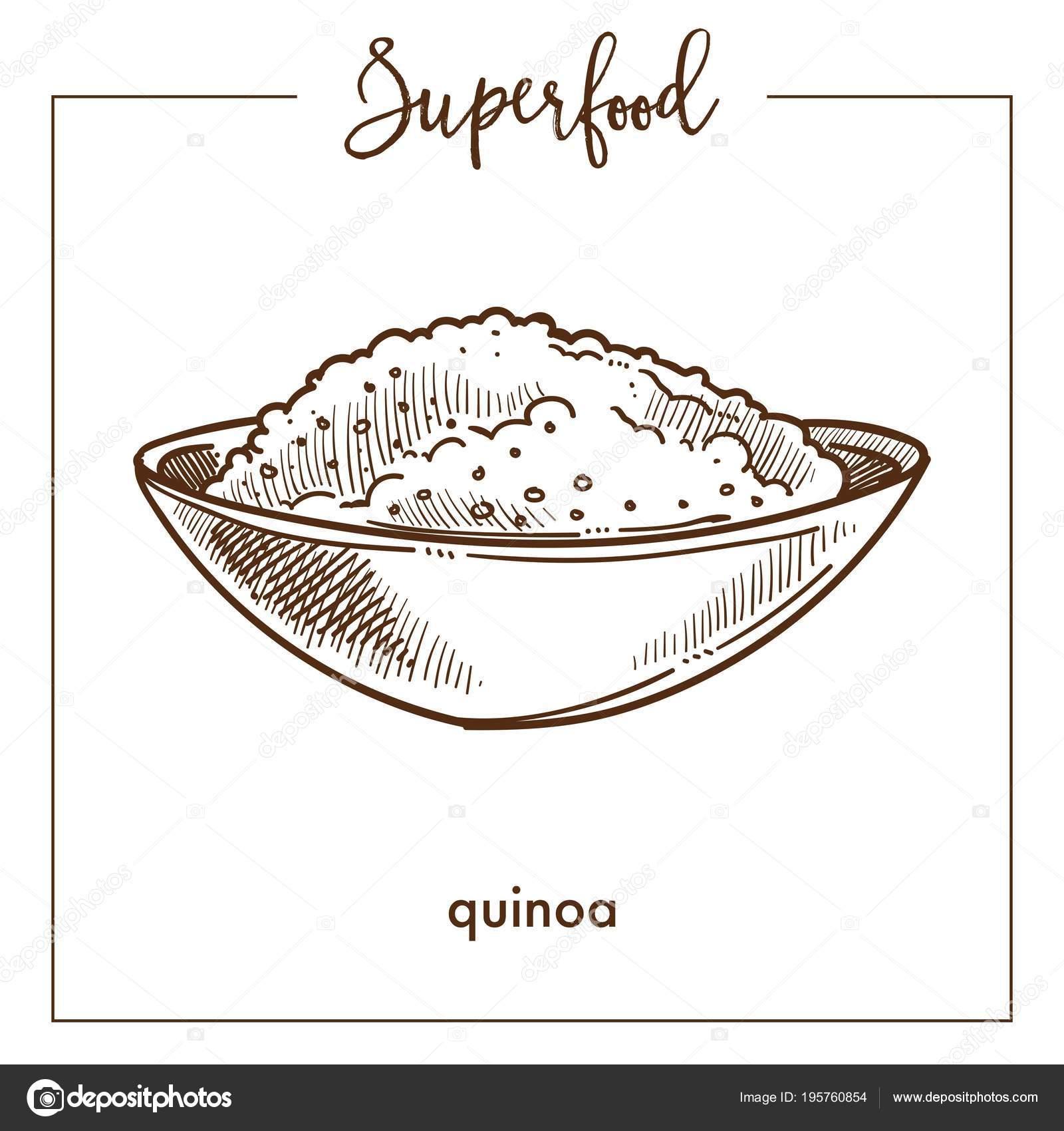 Dibujos Quinua Dibujo Para Colorear Cereal Quinoa Bosquejo Súper