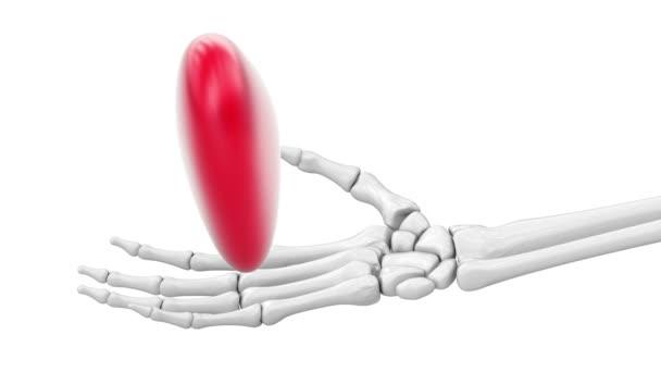 Tvar srdce v kosterní ruce. Záznam ze smyčky. 3D ilustrace.