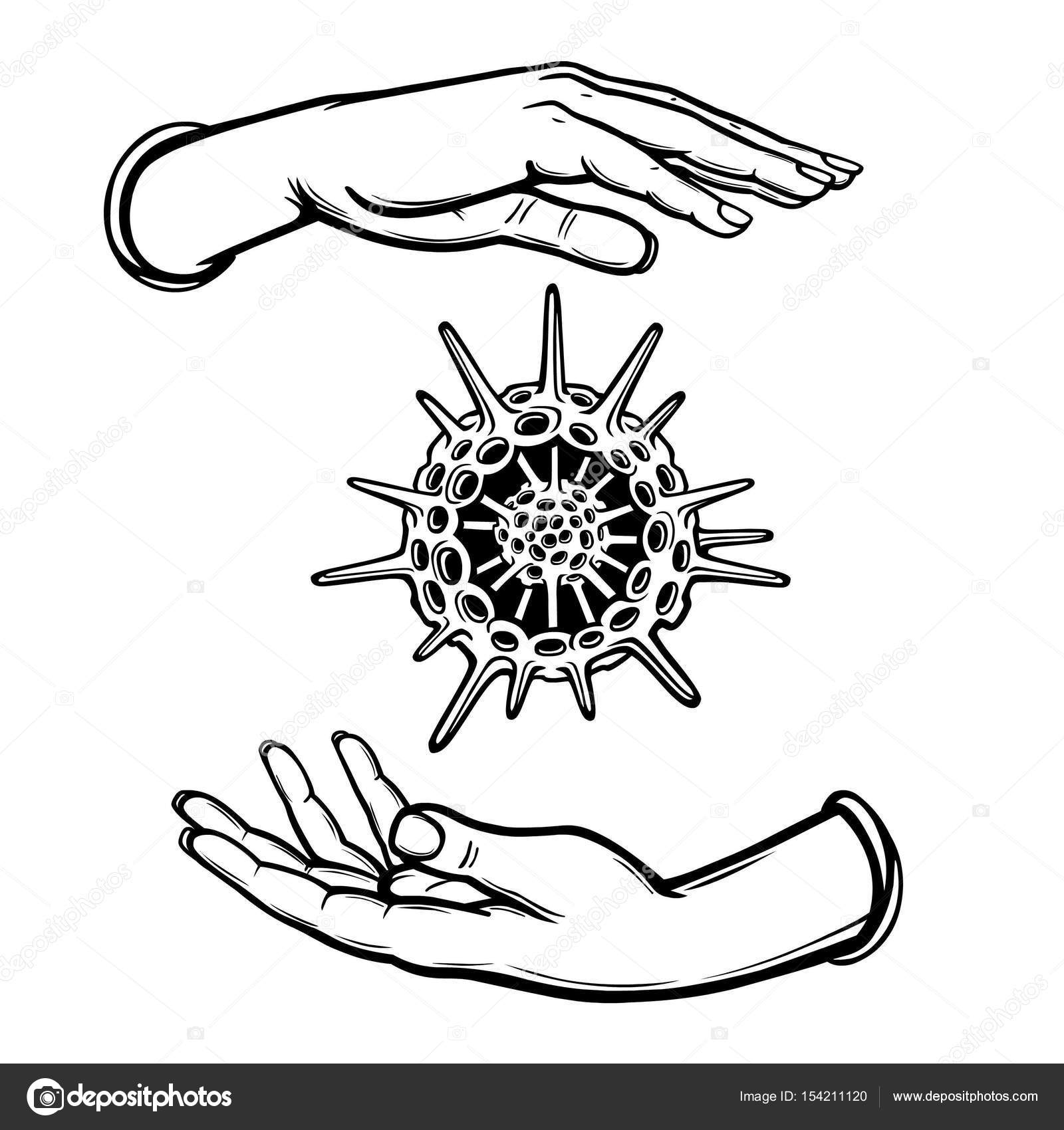 human hands hold a skeleton of a radiolaria  coloring book  vector  illustration isolated on