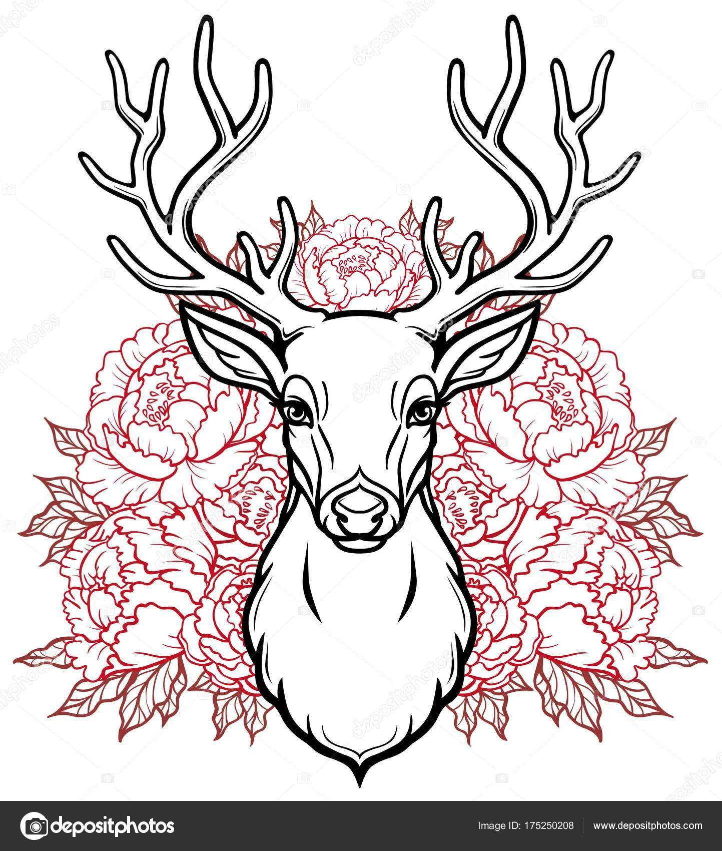 Lin aire dessin t te jeune cerf cornu fleurs rouge ajour illustration image vectorielle - Dessiner un cerf ...