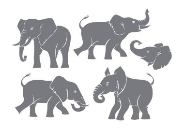 Silhouettes of grey elephants, on white background stock vector