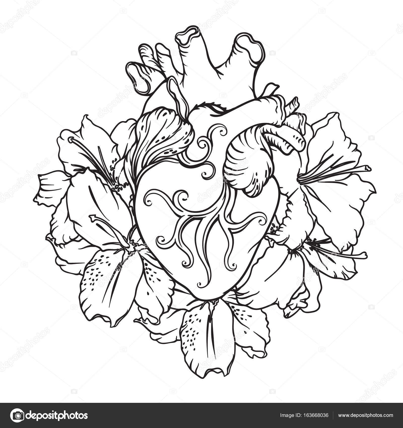 Kalp Ile Romantik Tarzda Beyaz Zambaklar çiçek Açan Kalp Kavramı