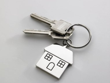 pair of house keys