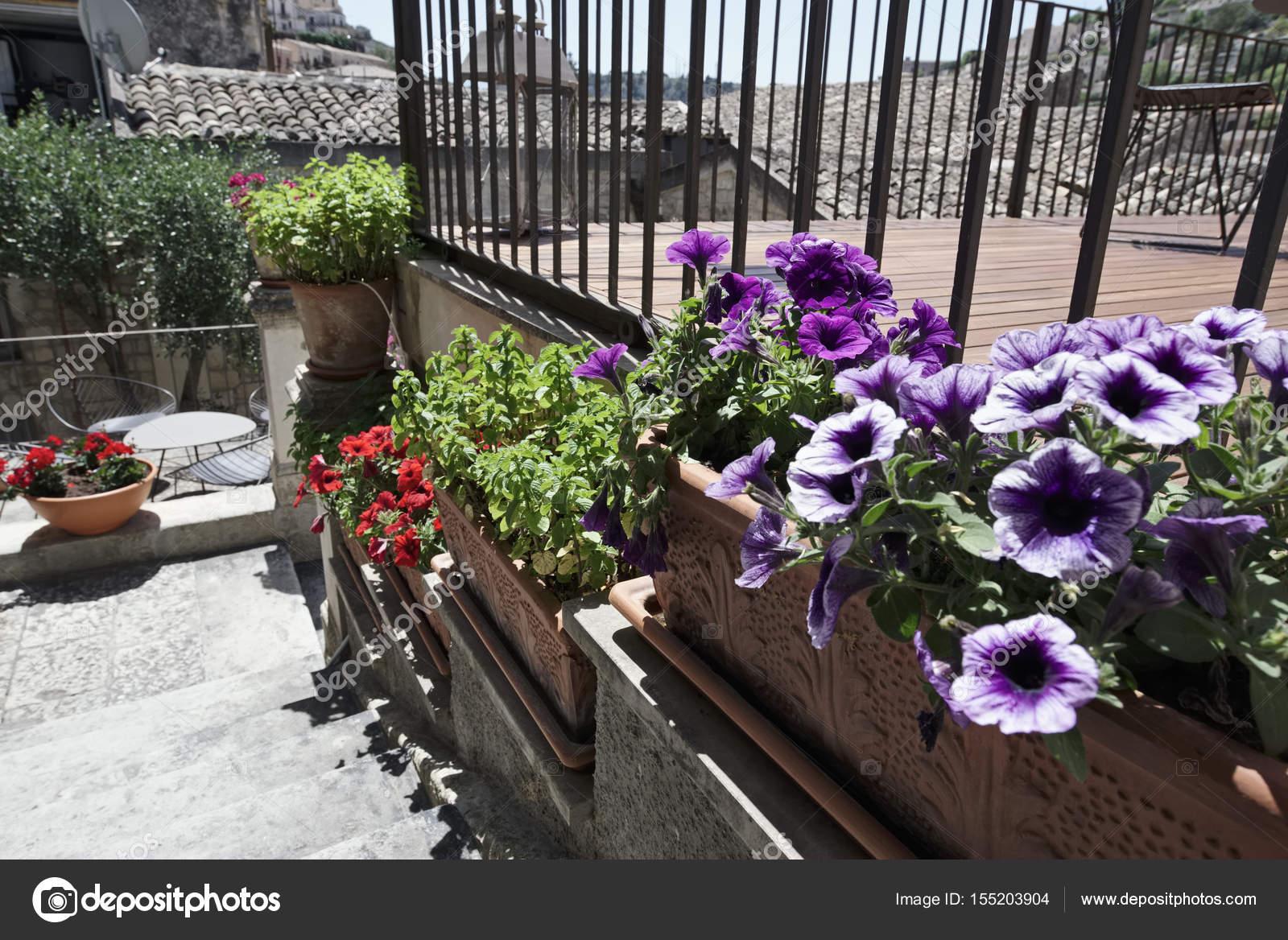 italien sizilien landschaft blumen und minze pflanzen in einem garten stockfoto. Black Bedroom Furniture Sets. Home Design Ideas