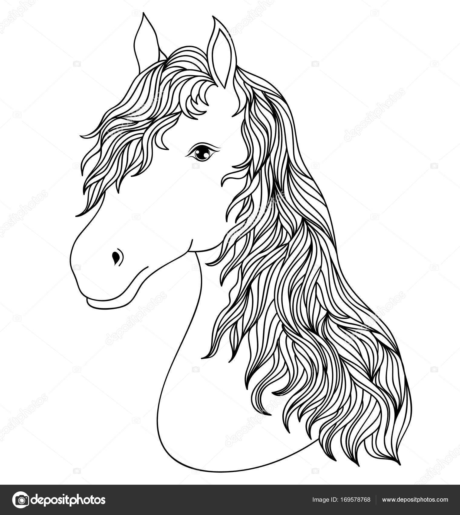 Hand gezeichneten Kopf des Pferdes — Stockvektor © kiyanochka #169578768