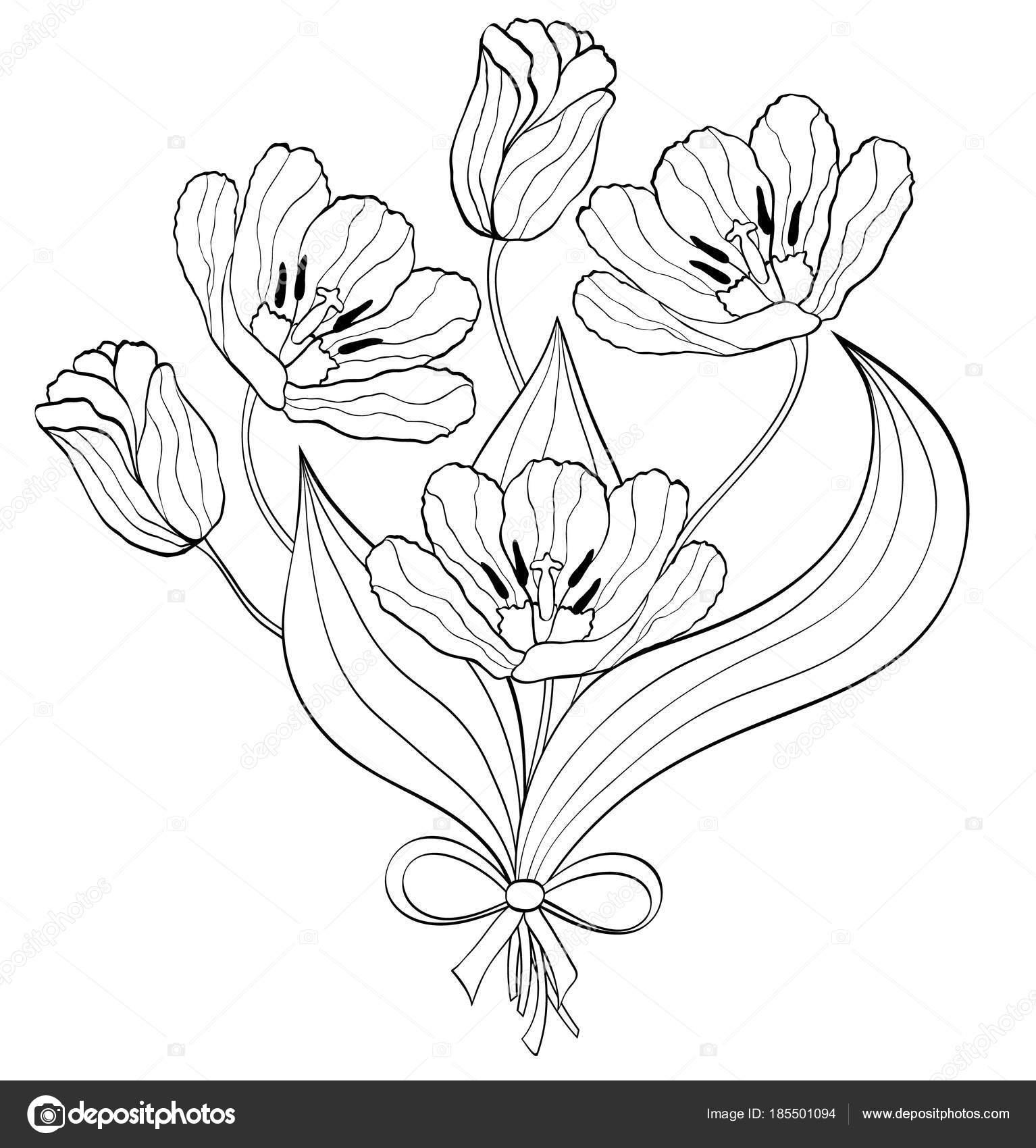 Bouquet von Hand gezeichneten Tulpen — Stockvektor © kiyanochka ...