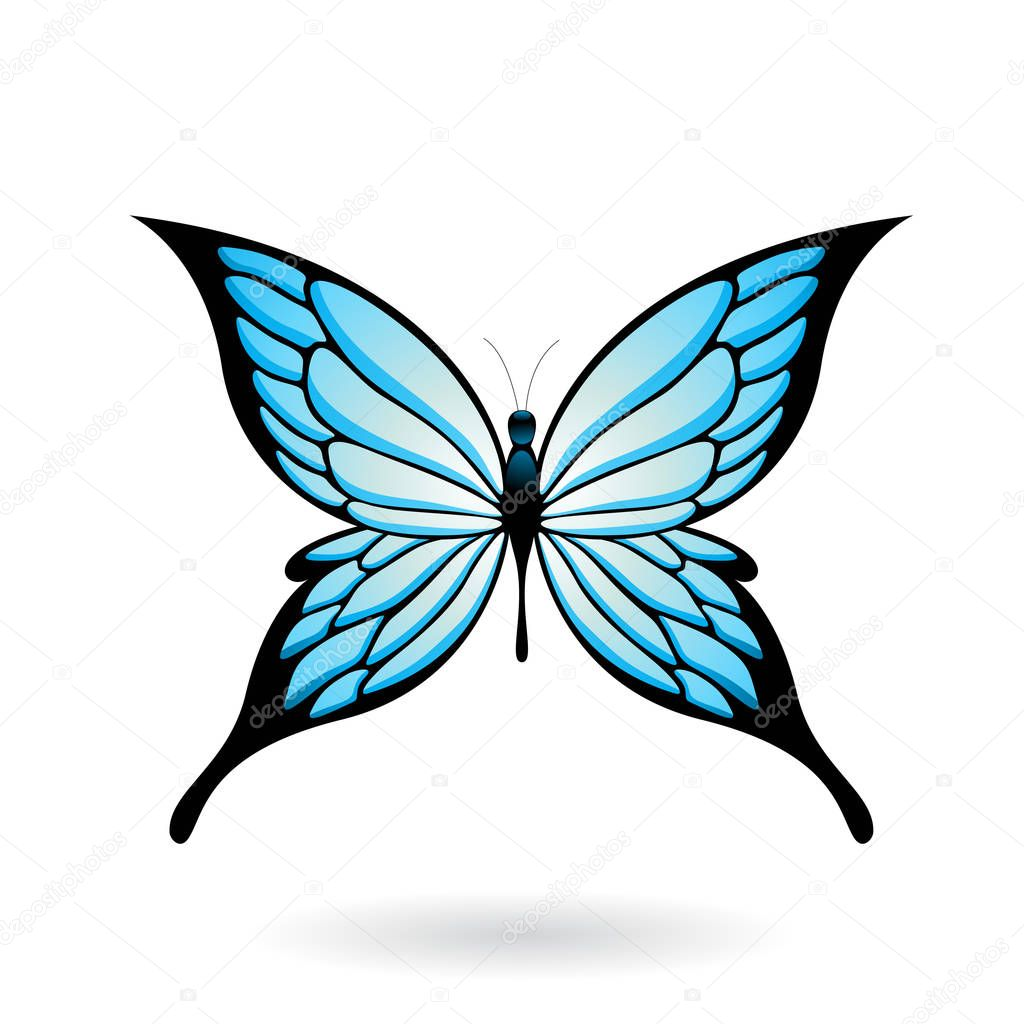 Colorful Butterfly Illustration — Stock Vector © cidepix #130177100