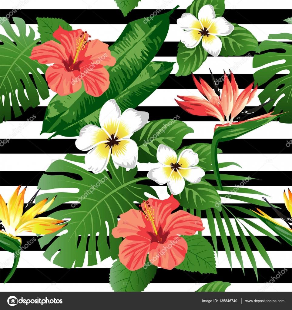 Flores tropicales y hojas sobre fondo amarillo sin - Flores tropicales fotos ...