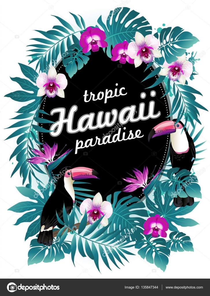 Fiesta Hawaiana Ilustracion De Vector De Aves Tropicales Flores
