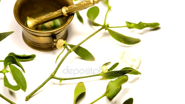 Mistletoe, medicinal plant with mortar on a turn table