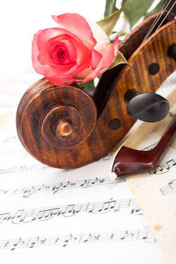 Close view of violin scroll, bow and red rose