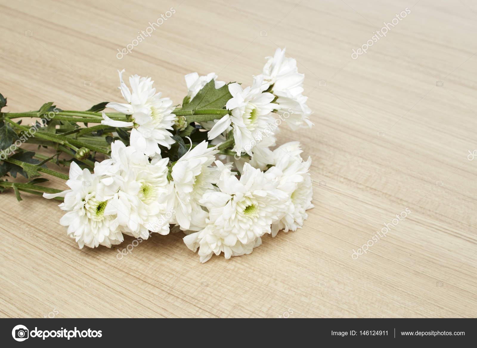 White Chrysanthemum Flowers Stock Photo Pongans68gmail