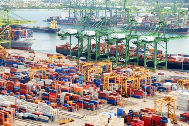 Cargo ships and gantry cranes at the Port of Singapore