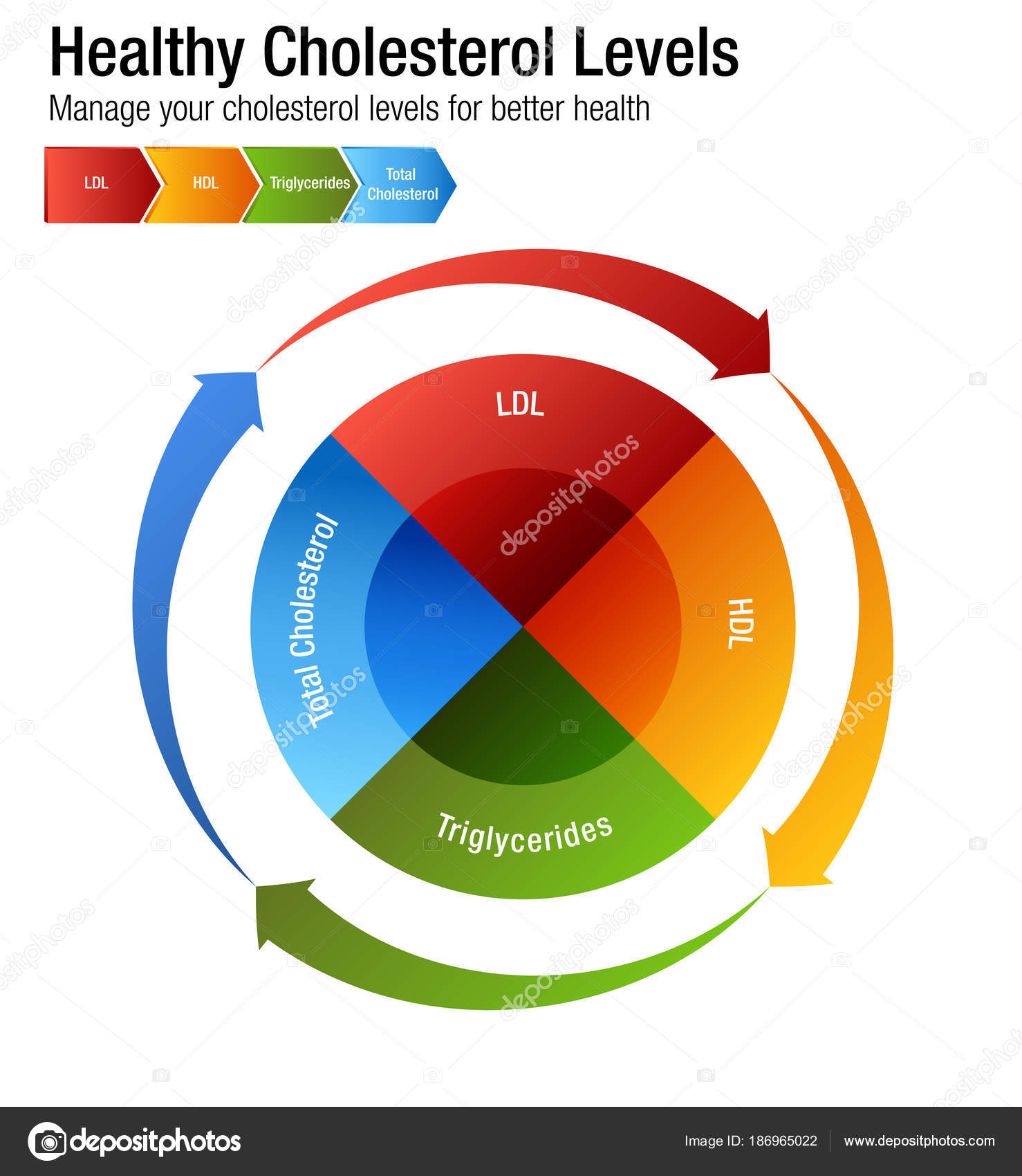 Insgesamt Blut Cholesterin Hdl Ldl Triglyceride-Diagramm ...