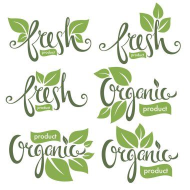 Organic and fresh, hand drawn lettering composition with green leaves for your logo or emblem icon