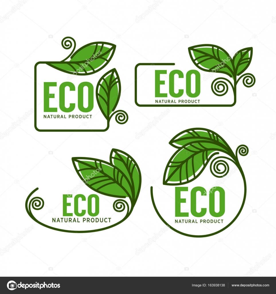 doodle organic leaves emblems, elements, frames and logo — Stock ...