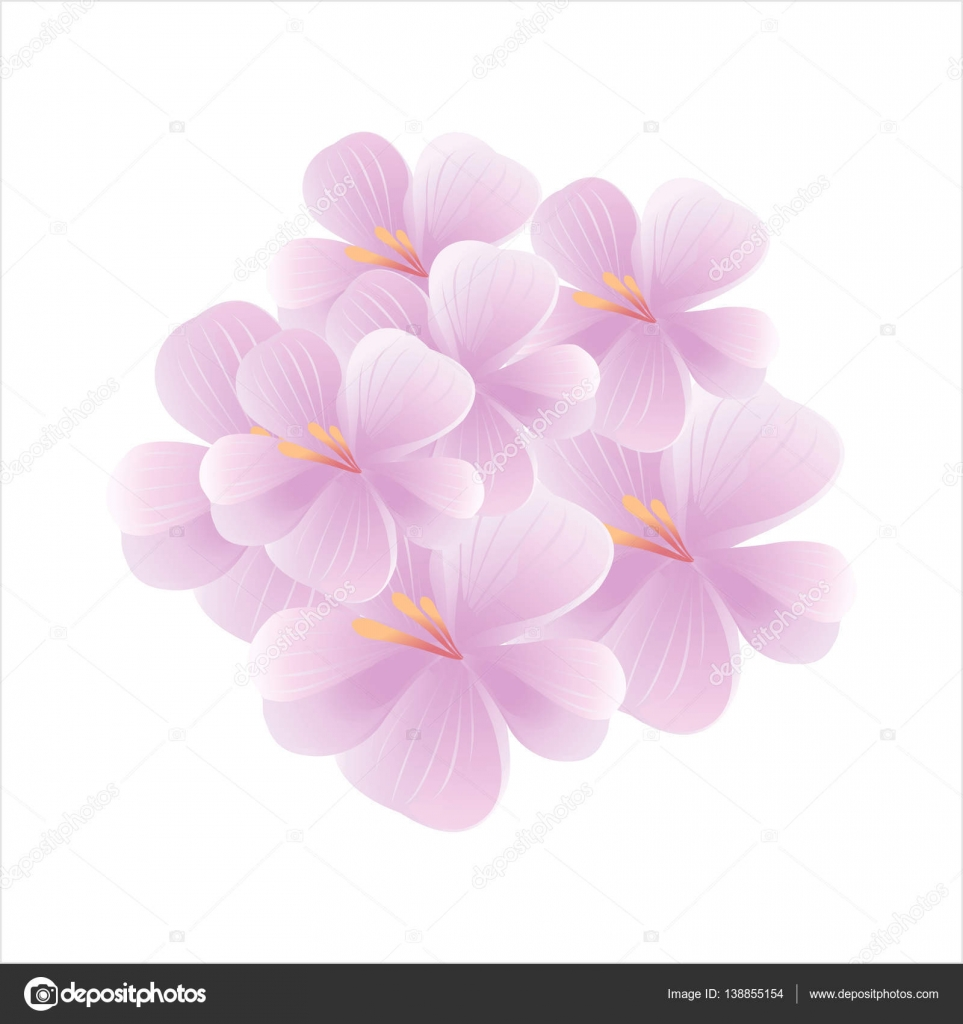 Flowers Design Flowers Background Bouquet Of Sakura And Flying