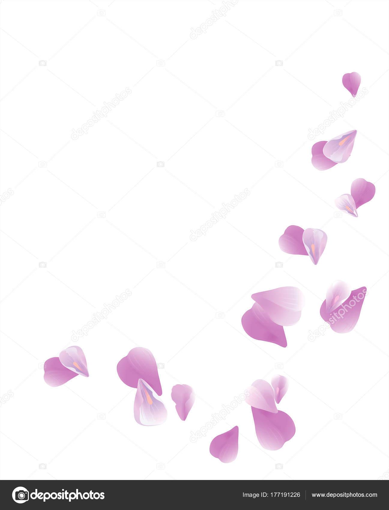 Petalos De Flores Volando Diseño Pétalos Fondo Flor Flores Pétalos